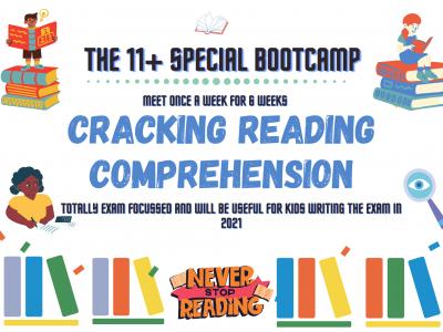 11+ Reading Comprehension