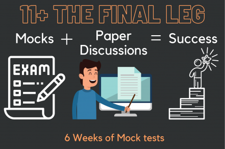 11+ Mock Tests + Paper Discussions